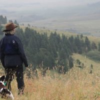 About Hunter's Heart K9 Scent Detection Training