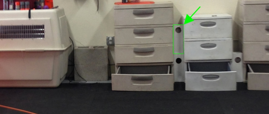 Photo of nosework lab. The arrow is pointing at a hide in a nosework box.