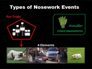 types_of_nosework_events_slide